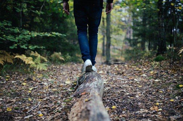 korzyści płynące z chodzenia na łonie natury